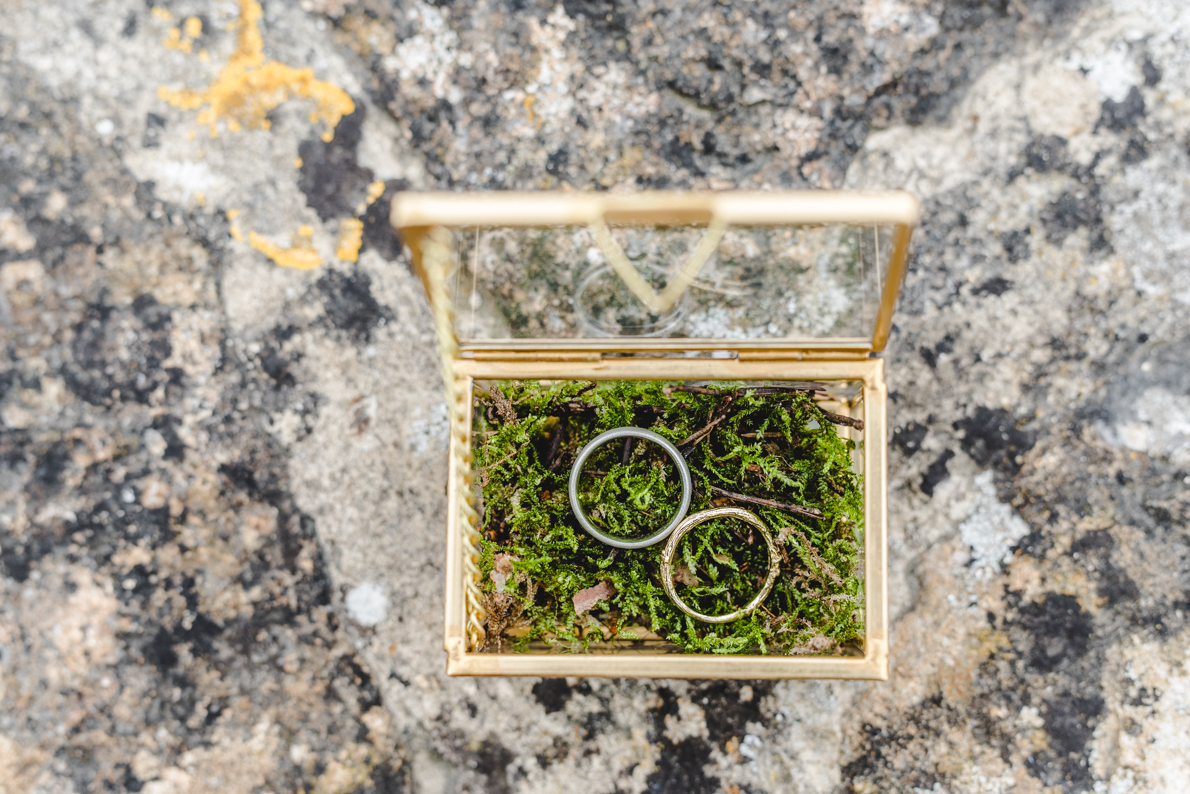 wedding rings in a moss box